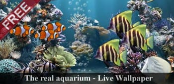 The real aquarium LWP