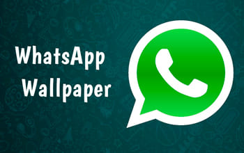 WhatsApp Wallpaper на андроид